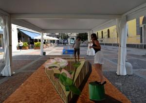 3D Streetart in Monza